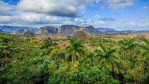 Viñales valley in Cuba