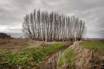 Brabantse Landschappen van Edwin Wiekens