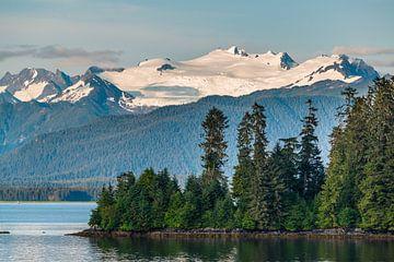 Bewaldete Insel von Denis Feiner
