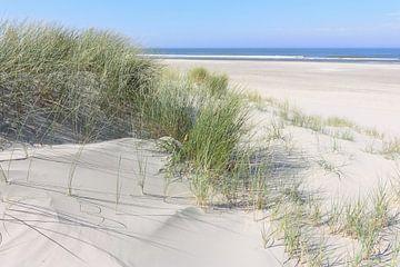 Dünen und Meer von Harry Wedzinga