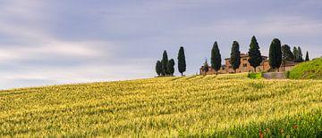 Farmhouse Genna Borborini Maria Eva - Val d'Orcia II van Teun Ruijters