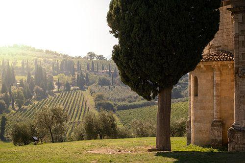 Toscaans landschap (Castelnuovo dell' Abate)