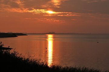 Sunset II van Marco van de Pol