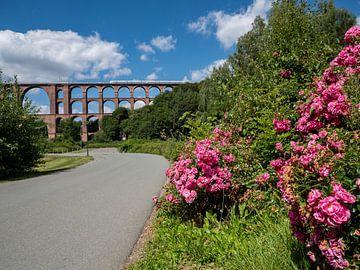 Göltzschtal brug in het Vogtland in de lente van Animaflora PicsStock