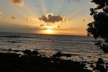 Nieuw Zeeland, zonsondergang bij van Anita Tromp