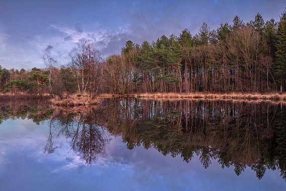 Aanbreken van de dag met blauwe lucht en de bosrand weerspiegeld in een meer