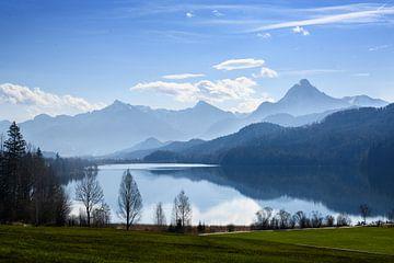 weissensee im morgenlicht vor den bergen der bayerischen alpen vor blauem himmel bei füssen, allgäu, von Maren Winter
