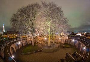 Burcht, Leiden van