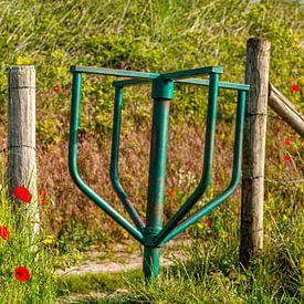 Draaihekje (stegelke) tussen de klaprozen in Zuid-Limburg van John Kreukniet