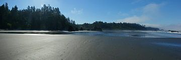 Ruby Beach, Parc National Olympique, Pacifique Nord-Ouest USA sur Jeroen van Deel