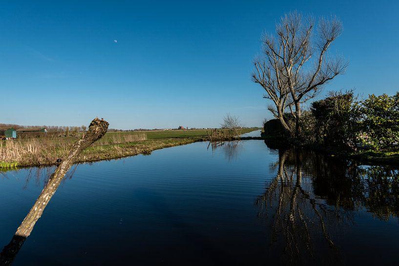 Waterlandschappen van Brian Morgan