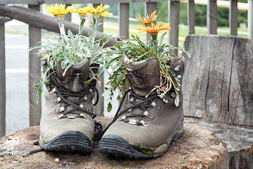 2nd life Schuhe von Rene Bakker