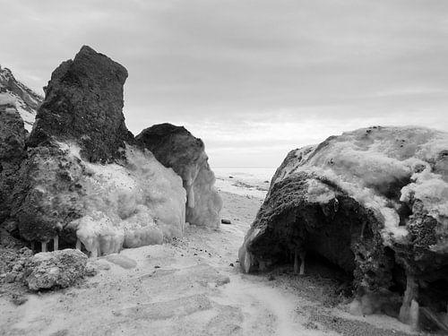 Die Lehmkralle – Hohes Ufer, Ahrenshoop, Darß von