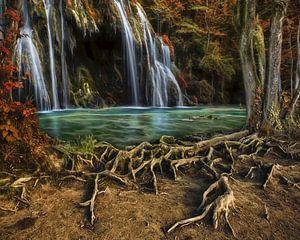 Enchanted Cascade