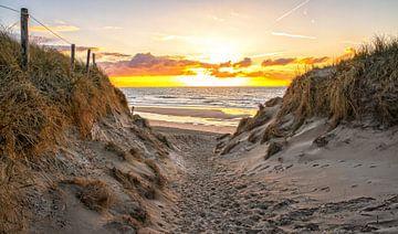 Strandopgang Texel / Beach entrance Texel sur Justin Sinner Pictures ( Fotograaf op Texel)