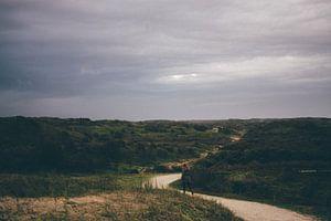 eenzaam in de duinen