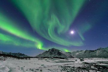 Northern Lights, lumière polaire ou Aurora Borealis dans le ciel nocturne sur l'île de Senja, dans l sur