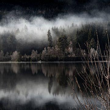 Magischer Nebel am See von Ella Schnur