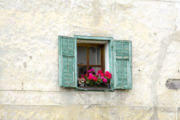 Raam met bloemen van