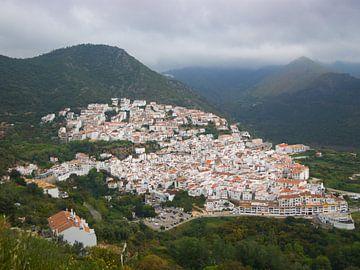 Stadsgezicht van wit dorp Ojen, Spanje van Atelier Liesjes