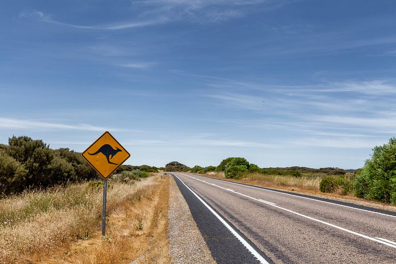 Outback Australië. Beroemde iconische kangaroe snelweg bord van Tjeerd Kruse
