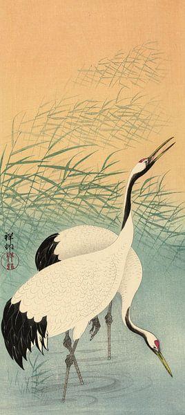 Twee kraanvogels, Ohara Koson van 1000 Schilderijen