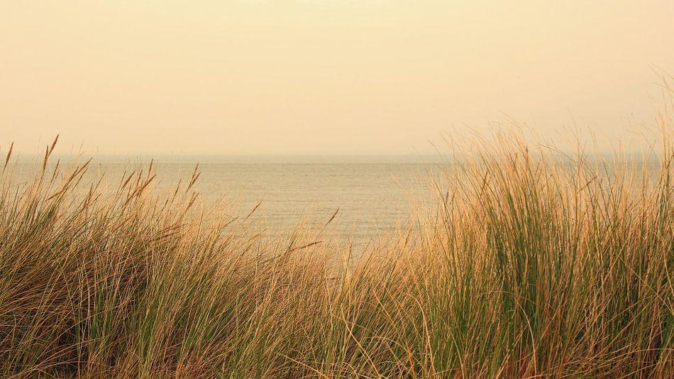aan zee -2-  van Yvonne Blokland