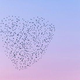 Liefde is overal. van Francis Dost
