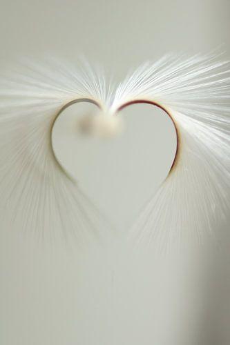 Heart van Carla Mesken-Dijkhoff