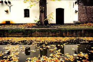 Zicht op een werfkelder aan de Nieuwegracht die vol ligt met herfstbladeren. van De Utrechtse Grachten