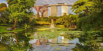 Blick von den Gardens by the Bay zum Marina Bay Sands Hotel, Singapur von Markus Lange
