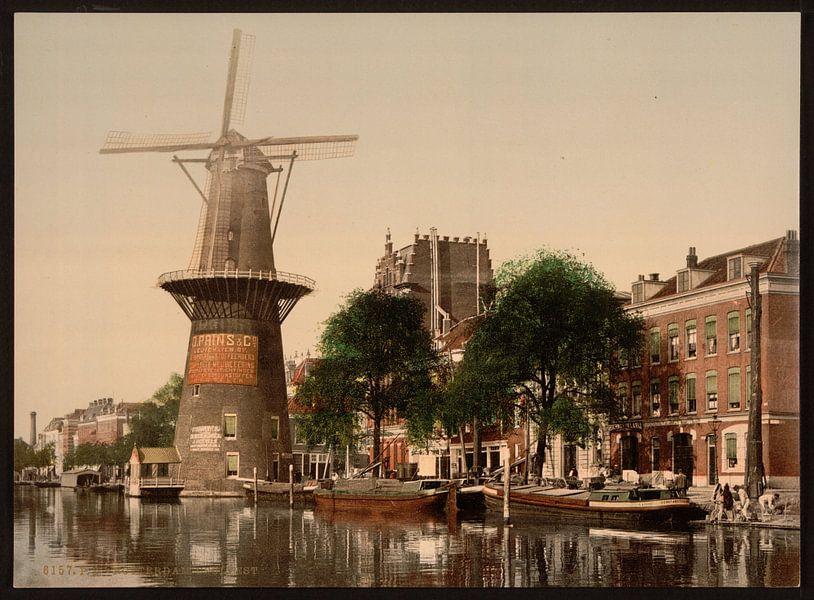 Coolvest (Coolsingel), Rotterdam van Vintage Afbeeldingen