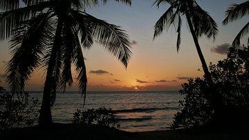 Sunset am Takamaka-Strand von Timon Schneider