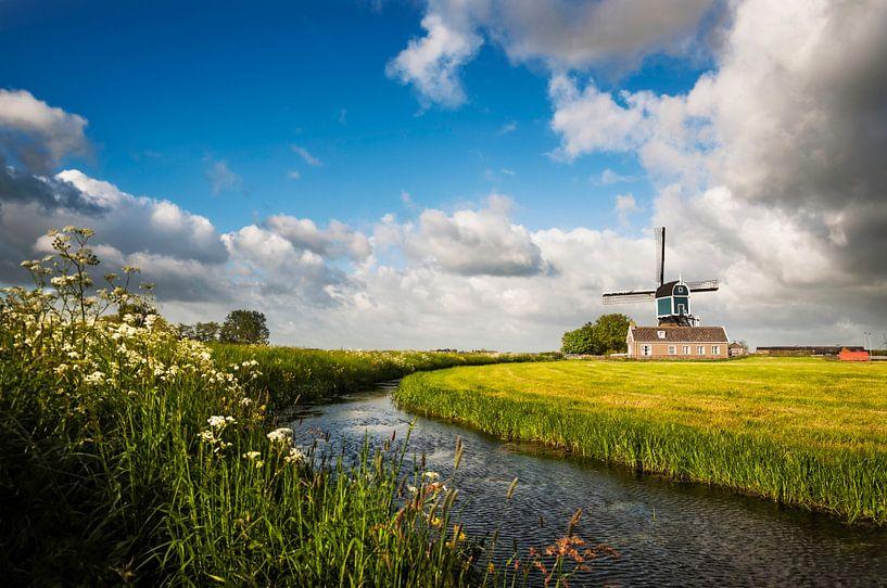 On My Way van Martijn van der Nat