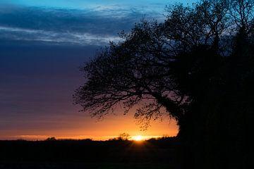 British Countryside  sur Jack Turner