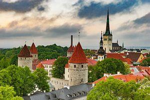 Tallinn Estonia van