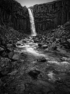 Svartifoss waterval in IJsland in zwart-wit