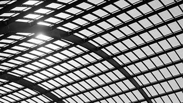 Dak Station Amsterdam Centraal van