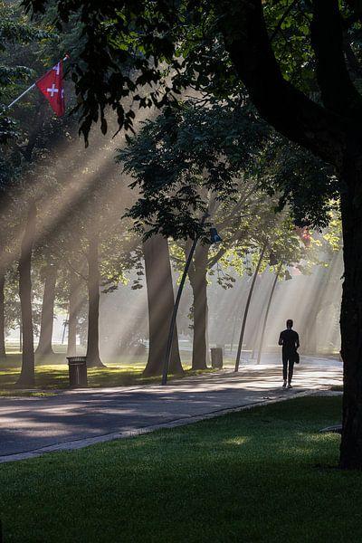 Een Regen van Zonnestralen van JPWFoto