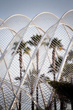 Palms van Ernst Wagensveld