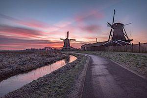 De molens van de Zaanse Schans in ochtendlicht van
