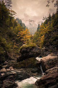 Mystieke herfst van Mariette Alders
