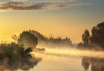 Nebel-Landschaftsbiesbosch von natascha verbij
