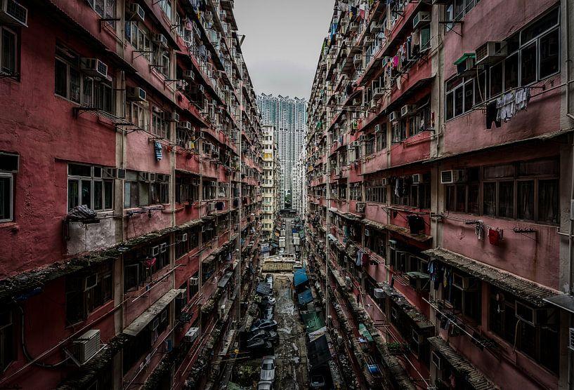 Hong Kong Urban Jungle von Mario Calma
