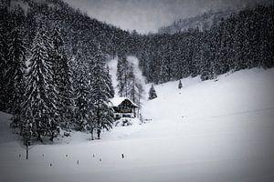 Bavarian Winter's Tale IX