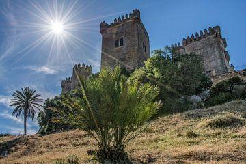 Het kasteel Almodovar del Rio in de buurt van Cordoba, Spanje van Harrie Muis