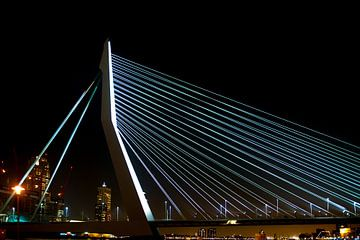 Erasmus brug Rotterdam van Brian Morgan