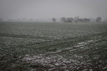 Nebliger Tag im flämischen Feldern III von Manuel Declerck