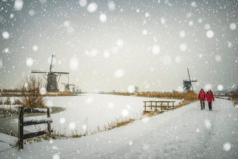 Falling snow van Jan Koppelaar