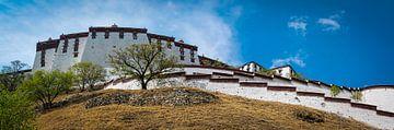 Het immens grote Potala paleis in Lhasa, Tibet van Rietje Bulthuis